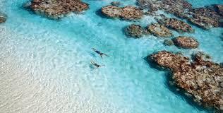luxury resort in french polynesia home the brando