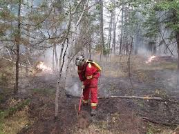 Wildfire Bc Jobs by B C Wildfires Provided Valuable Experience For Central Alberta