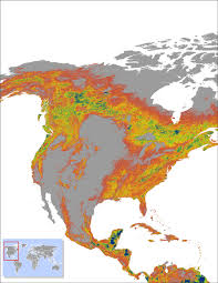 North America Forest Map by Why Forest Fragmentation Risks Mass Extinctions World Economic Forum