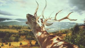 chronic wasting disease threatens deer population season