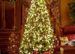 Christmas Decorations Ideas Outdoor Outdoor Christmas Decorating Ideas Outdoor Tree Decorating Ideas