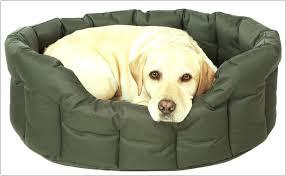 Washable Dog Beds Kuranda Dog Beds Ireland Pnhar Fleece Dog Bed Cushion With