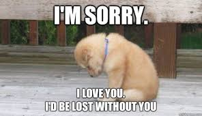 Funny Sorry Memes - i m sorry i love you i d be lost without you sorry puppy