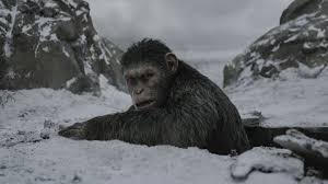 Seeking Planet Series Review War For The Planet Of The Apes Is An Epic Slog The