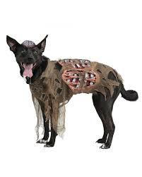Dead Cowboy Halloween Costume 10 Trending Dog Halloween Costumes 2015 Dogtime