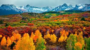 Colorado scenic beauty natural attractions landscape fall forest