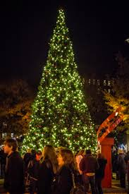 christmas tree lighting near me regal celebration of lights city of knoxville
