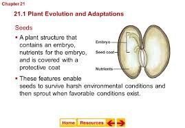 chapter 21 introduction to plants ppt video online download