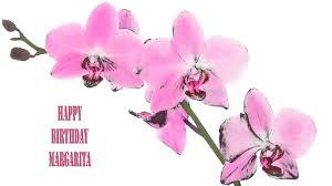 margarita birthday margarita flowers u0026 flores happy birthday youtube