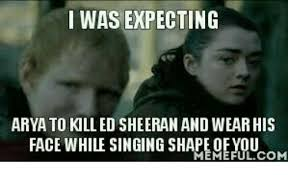 Arya Meme - i was expecting arya to kill ed sheeran and wear his face while