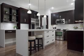 modular kitchen cabinets monsterlune kitchen decoration
