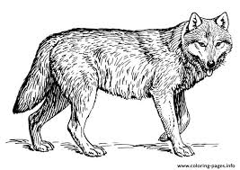 wolf s to print out coloring pages printable