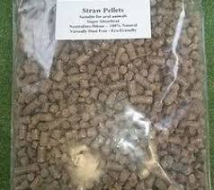 Tortoise Bedding Best Reptile Substrate Tortoise Deals Compare Prices On Dealsan