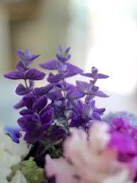 in a vase on monday u2013 a bowl of inspiration u2013 peonies u0026 posies