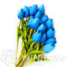 tulips flowers blue tulips flowers seeds bonsai tulip seed flower plants