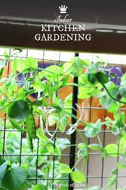 Indoor Kitchen How To Get Started With Indoor Food Growing Empress Of Dirt