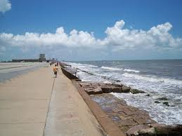 why visit galveston fun things to do u0026 see in galveston tx sr