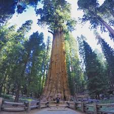 Usa Places To Visit Best 25 California Places To Visit Ideas Only On Pinterest
