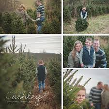 christmas tree farm sessions murphy christmas tree farm sparta
