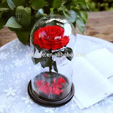 fashion home decor good quality preserved roses big size in glass