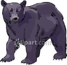 black bear royalty free clipart picture