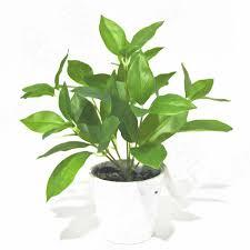 Fake Bushes Fake Green Basil Leaves 25cm Artificial Greenery Pinterest