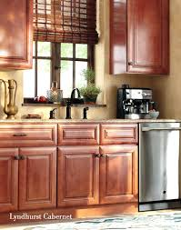 Home Decorators Cabinets Reviews Home Decorators Collection Kitchen Cabinets In All Places Style Is