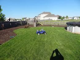 landscaping ideas for backyard privacy solidaria garden