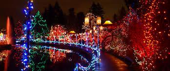 led christmas lights everything you need to about m5 led christmas lights led