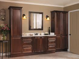 bathroom cabinet ideas storage bathroom closet storage bathroom organizers and storage
