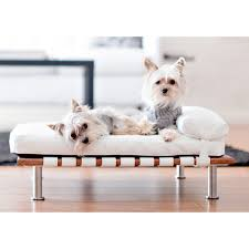 small pet beds elegant ivy modern small dog day bed designer dog beds for small