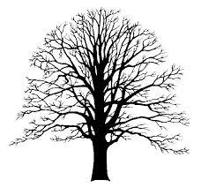 25 unique tree silhouette ideas on tree