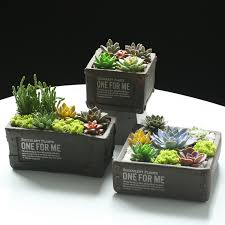 Wholesale Flowers Near Me Aliexpress Com Buy Desktop Mini Ceramic Flowerpots Pastoral