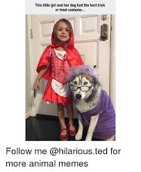 Little Girl Memes - this little girl and her dog had the best trick or treat costume