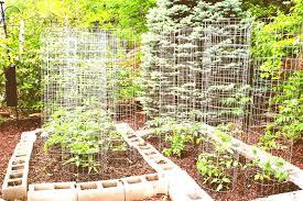 small kitchen garden ideas small vegetable garden plans for sun house and decor garden