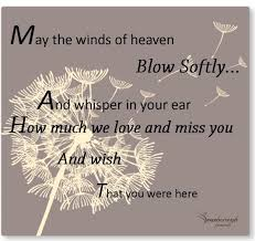 Comforting Words For Someone Who Has Lost A Loved One Bereavment Verses That Include Trees Funeral Poems And Quotes