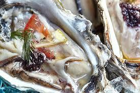cuisine discount lyon cuisine nolte lyon cuisine nolte lyon cuisine 1 4 to z i cuisine