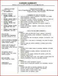 Resume Examples Summary by Professional Summary For Resume Whitneyport Daily Com
