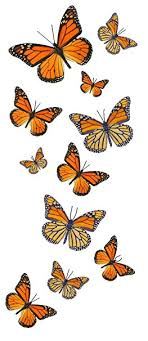 amazon com 55 monarch butterfly temporary tattoos health