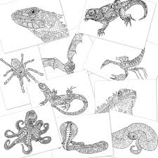 paisley doodle bat scorpion iguana lizard snake cobra spider