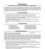 Finance Executive Resume Samples by Best Sample Summary Writing Resume For Financial Executive With