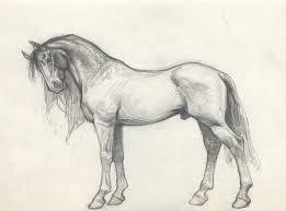 petar meseldžija art horses