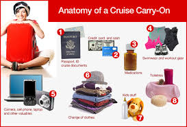 Top 10 Must Pack Cruise by Anatomy Of A Cruise Carry On Cruise Critic