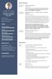 Sample Resume For Software Engineer With 1 Year Experience by Software Developer Resume Samples Visualcv Resume Samples Database