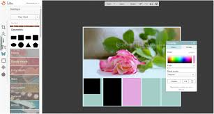 creating a custom color palette from an image in picmonkey diy