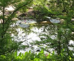Boothbay Botanical Gardens by Uniquely Maine U2013coastal Maine Botanical Gardens Henbogle