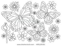 coloring page butterfly monarch coloring page butterfly butterfly butterfly coloring page coloring