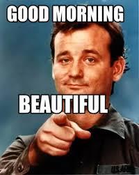 Good Morning Meme Pics - hilarious good morning memes images wishmeme