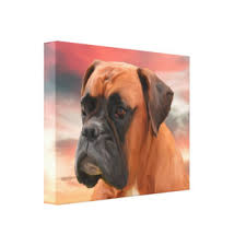 boxer dog wall art boxer dog wrapped canvas prints zazzle