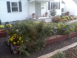 featured farmer melinda from the homesteading and preparedness